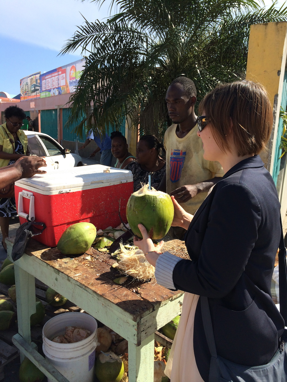 BSC Projects BTL Park Belize 2014-4
