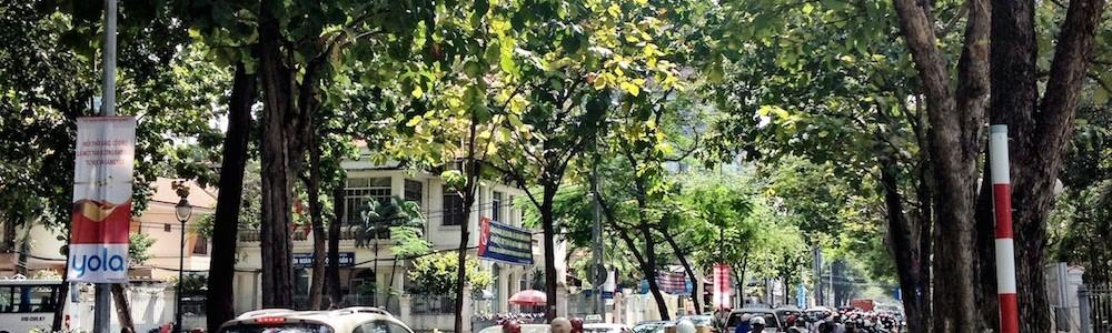 Vietnam:  From peasant economy to prosperity